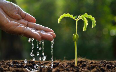 Groei onthullen in uw onderneming!