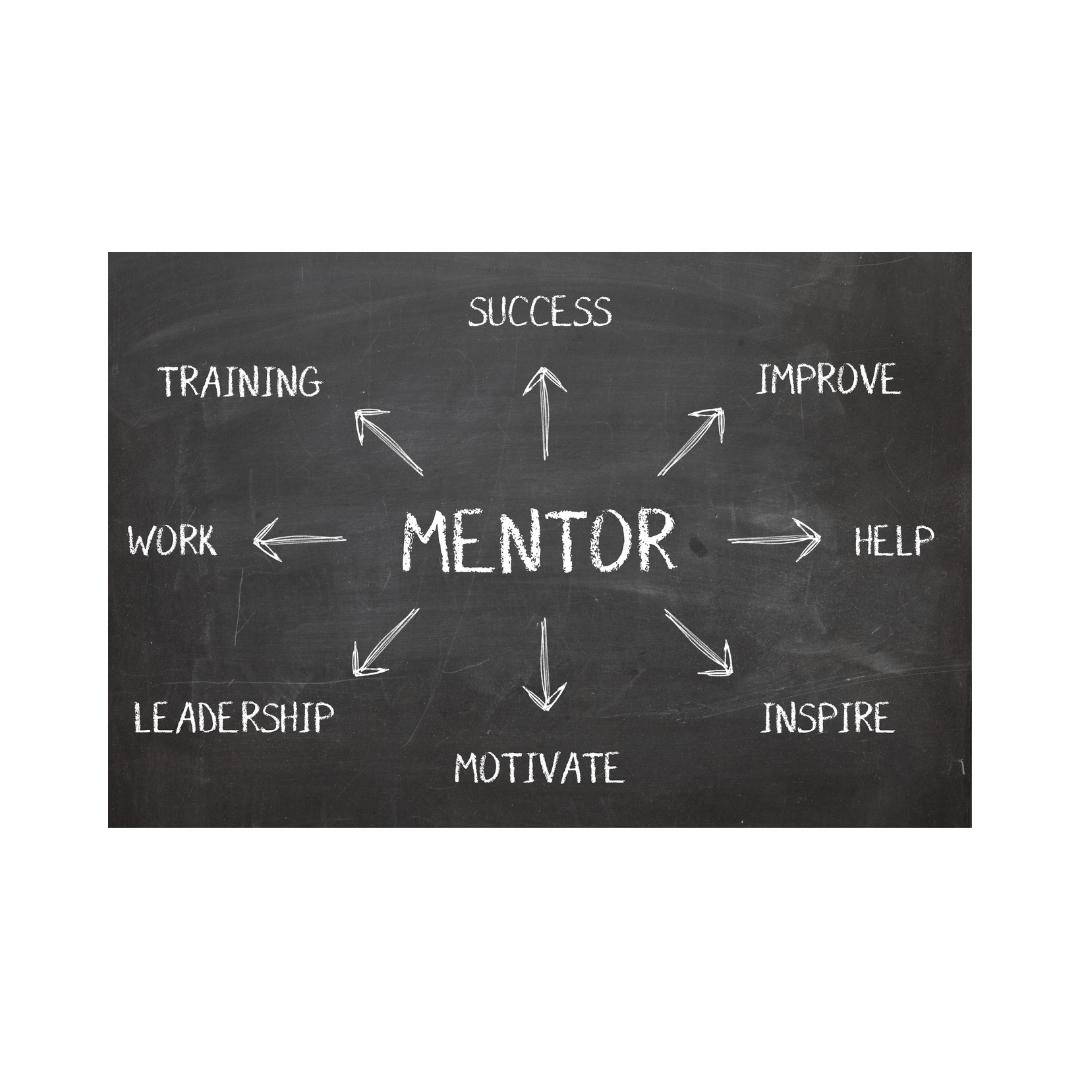 Wat mag u van een mentor verwachten?